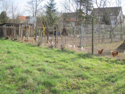Hühnergehege hühnergehege auf dörfern